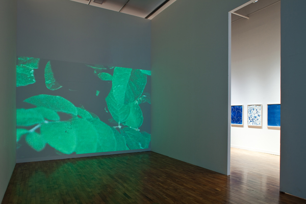 Installation with 2 opposed projections